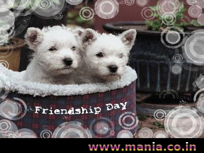 Have-A-Friendship-Day-