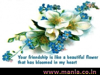 your friendship is like a beautiful flower that has bloomed in my heart