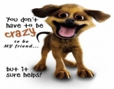 YOU DON'T HAVE TO BE CRAZY TO BE MY FRIEND BUT IT SURE HELPS!!