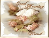 Good Morning Friend