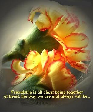 Friendship is all about being together at heart, the way we are and always will be...