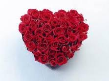 Heart Of Roses For Valentine